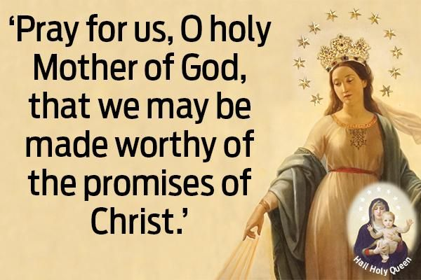 Pray For Us, O Holy Mother of God, That We May Be Made Worthy of the Promises of Christ
