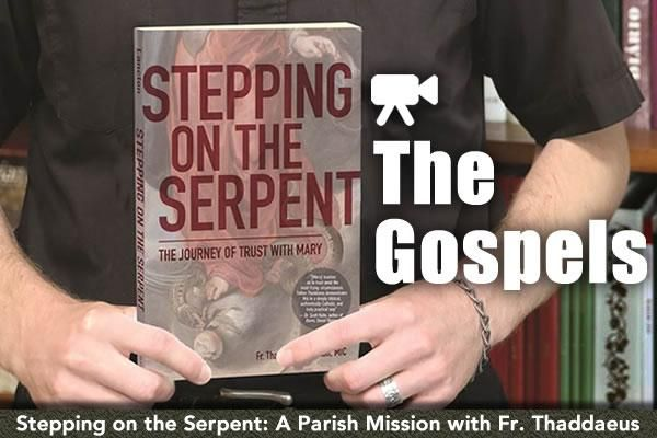 Stepping on the Serpent: A Parish Mission Pt. 3