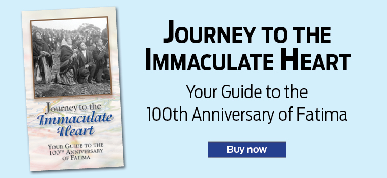 Journey to the Immaculate Heart Your Guide to the 100th Anniversary of Fatima  Buy now
