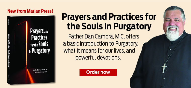 Prayers and Practices for the Souls in Purgatory  Father Dan Cambra, MIC, offers a basic introduction to Purgatory, what it means for our lives, and powerful devotions.  Order now